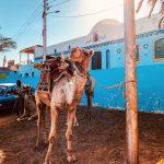 Egipt_03